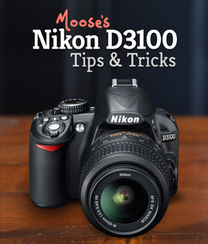 Nikon D3100 Tips & Tricks