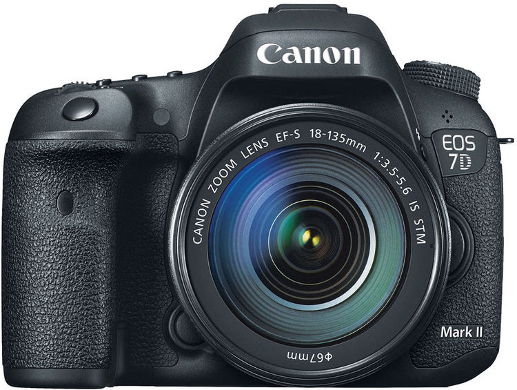 Canon 7D Mark II Cheat Cards